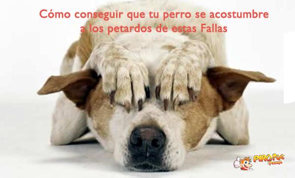 petardos y perros en Fallas